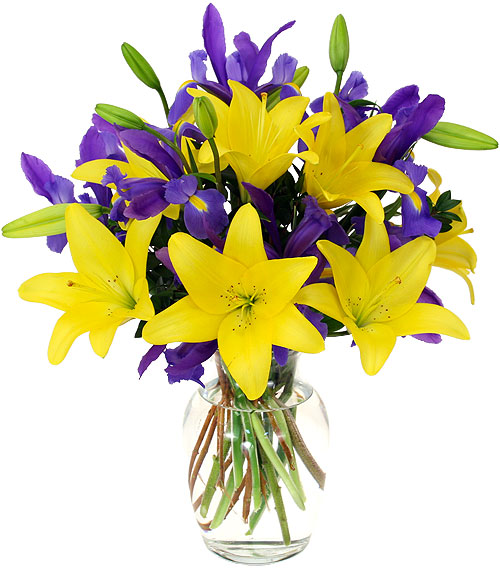 Springsational floral fusions leicester based florist for springsational 2800 a striking arrangement of yellow lilies and purple mightylinksfo