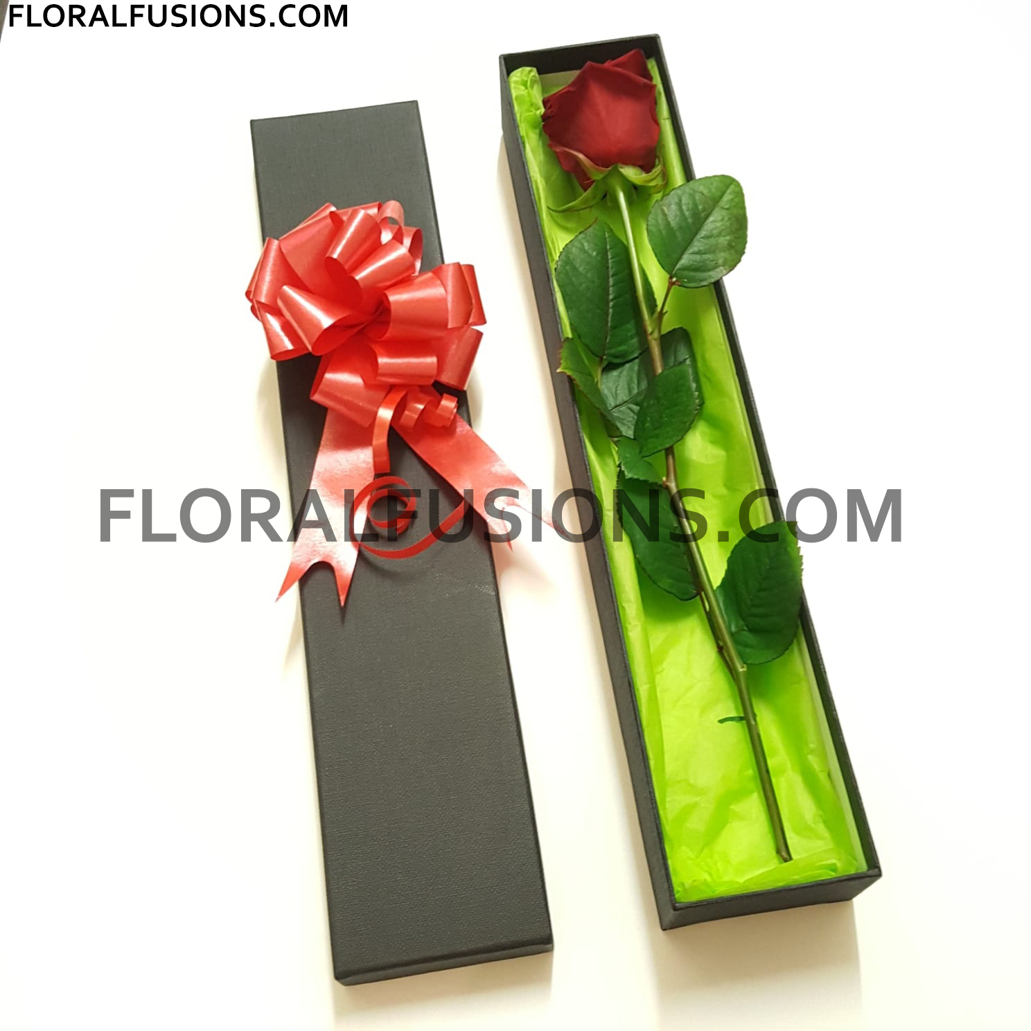 Single Red Rose in a Green Box